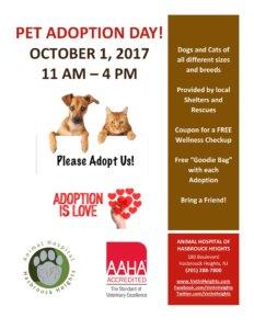 Pet Adoption Day Oct 1, 2017