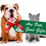Pets do NOT Make Good Gifts